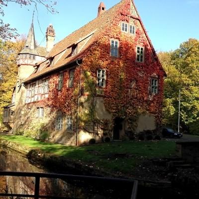 historisches Gutshaus mit bewachsener Fassade