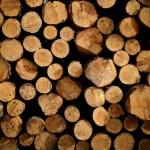 Holzhandel, Kaminholz